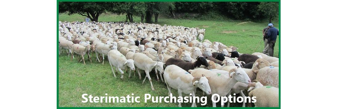 Sterimatic Purchasing